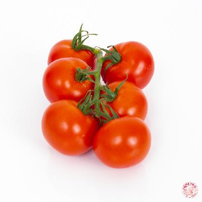 Tomate grappe Rabelais