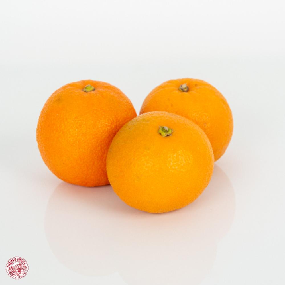 Orange Amère