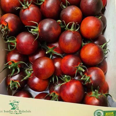 Tomates prunes