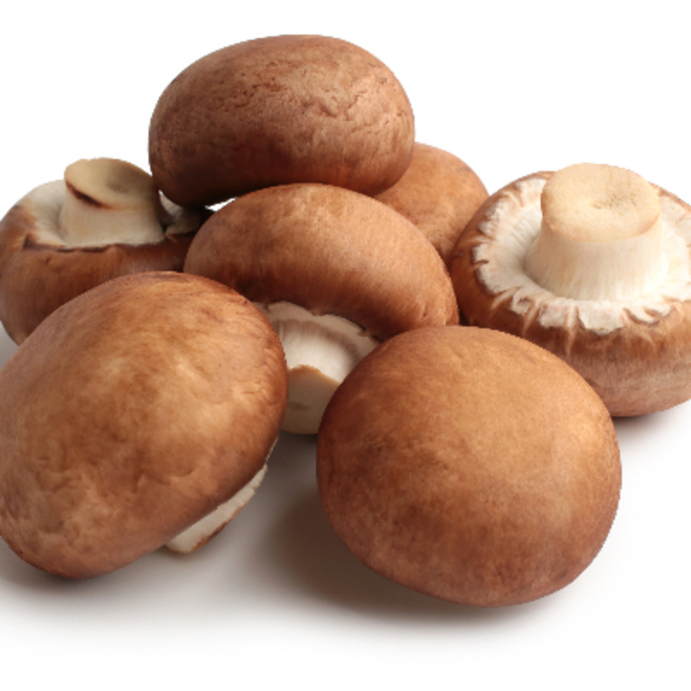 Champignon de Paris Bruns