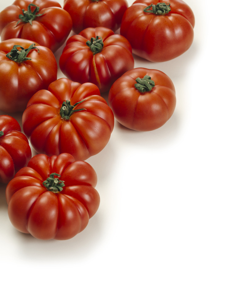 Tomate Rebellion (charnue)